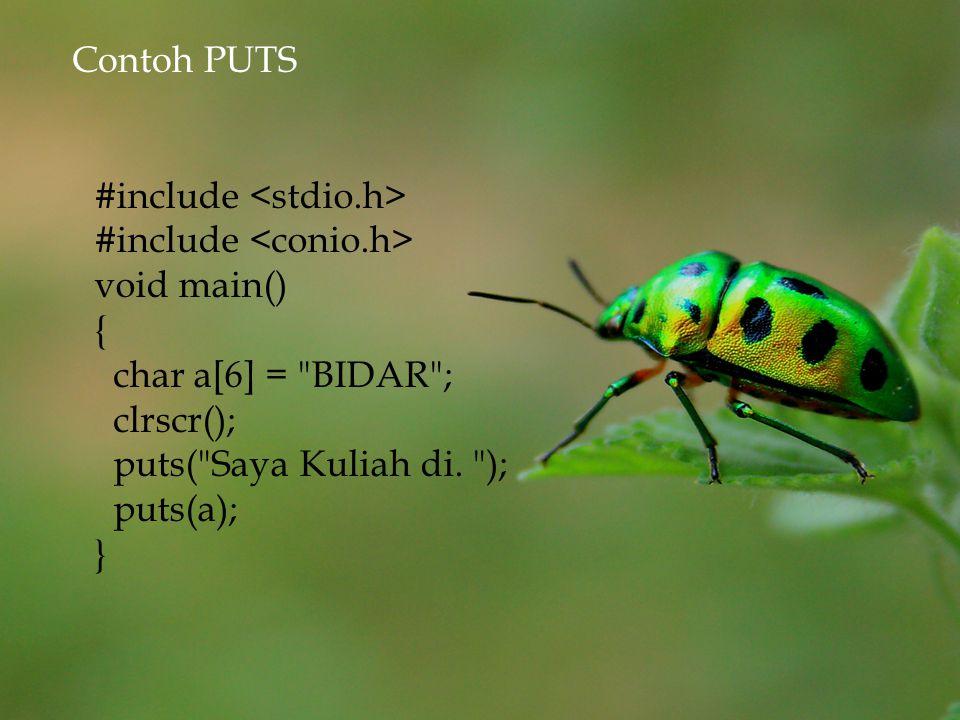 Contoh PUTS #include <stdio.h> #include <conio.h> void main() { char a[6] = BIDAR ; clrscr();
